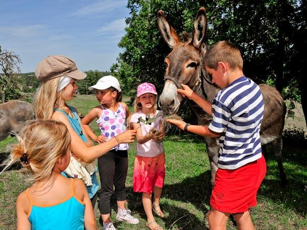 Vous pouvez notamment aller visiter la ferme et la savonnerie du Velay à Beauzac.