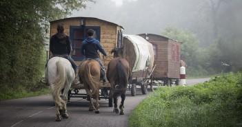 roulotte et chevaux