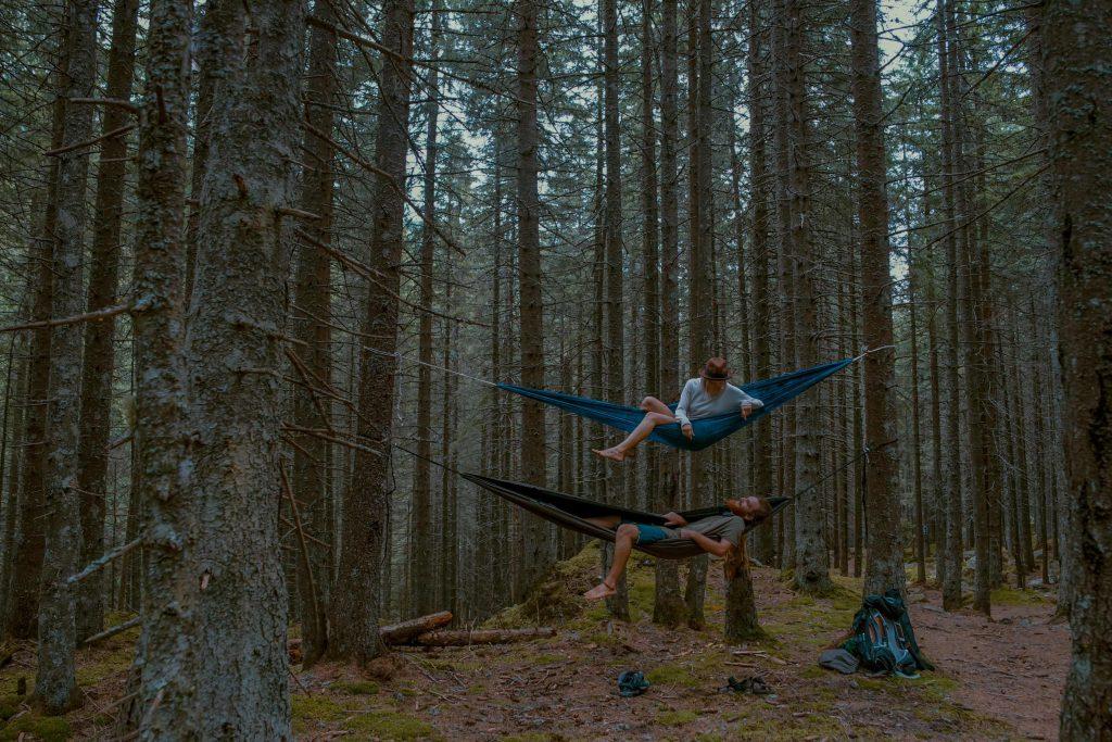 Deux personnes dans des hamacs dans la forêt