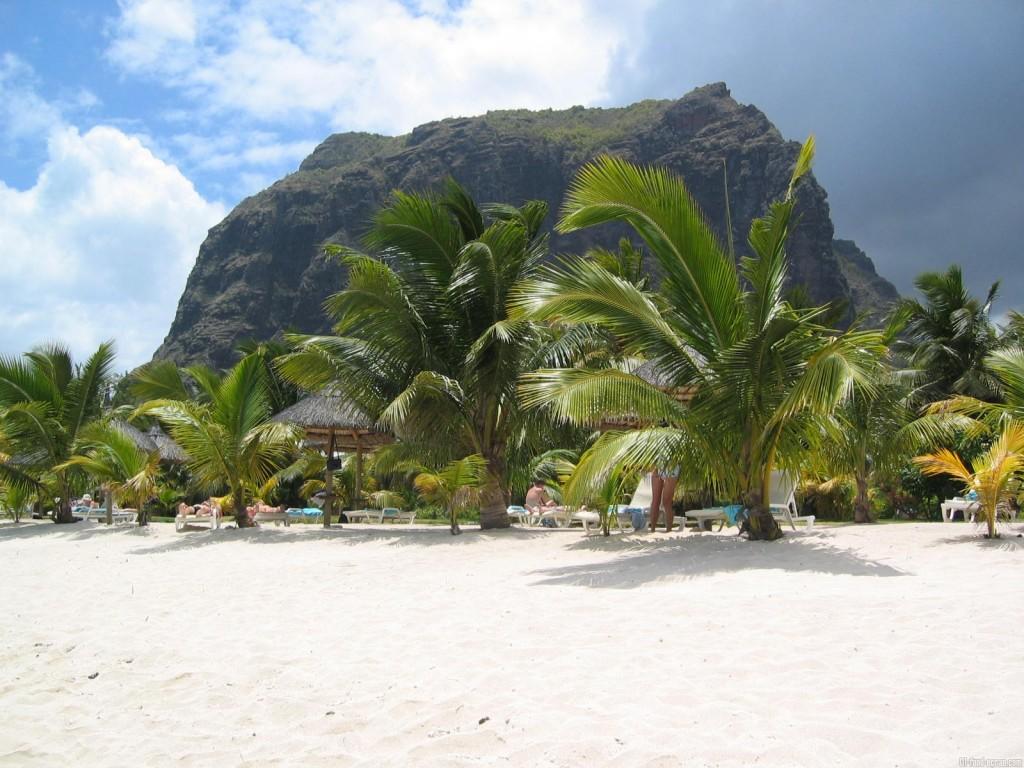 Fond d'écran plage et cocotier L'îles Maurice
