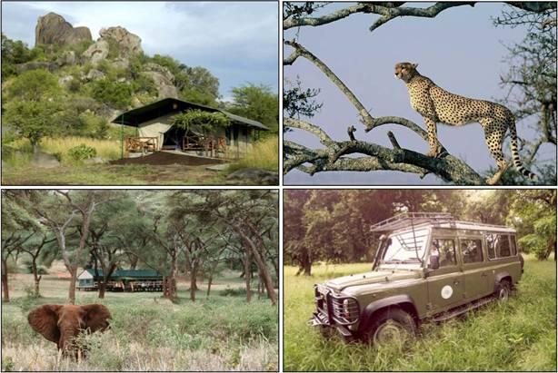Safaris Tanzanie Zanzibar